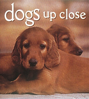 Image for Dogs Up Close (Tiny Folio)