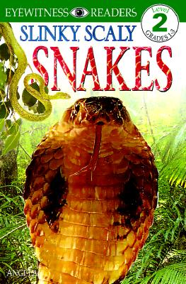Image for SLINKY SCALY SNAKES!