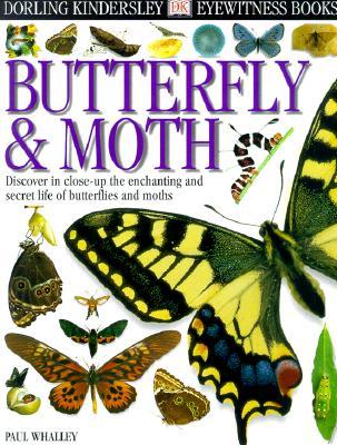 Image for Eyewitness: Butterfly & Moth (Eyewitness Books)