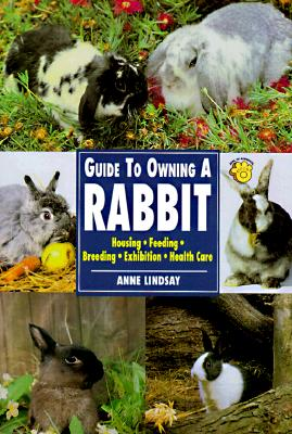 Image for Guide to Owning a Rabbit (Re Series)