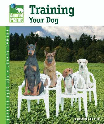 Image for Training Your Dog