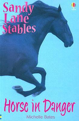 Image for Horse in Danger (Sandy Lane Stables)