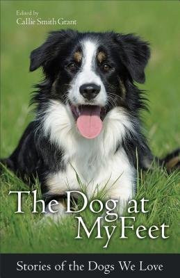 Image for The Dog at My Feet: Stories of the Dogs We Love