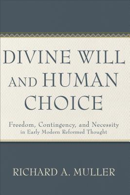 Image for Divine Will and Human Choice: Freedom, Contingency, and Necessity in Early Modern Reformed Thought