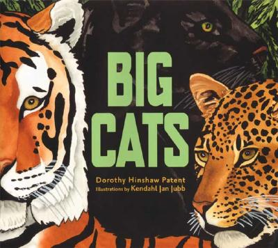 Image for Big Cats (New)