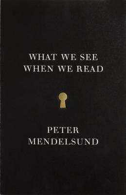 Image for WHAT WE SEE WHEN WE READ