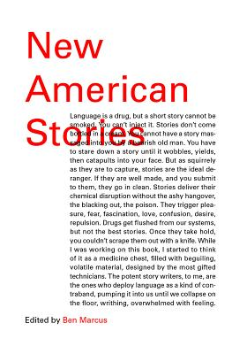 Image for New American Stories (Vintage Contemporaries)