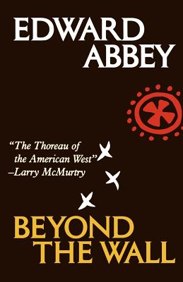 Image for BEYOND THE WALL  Essays from the Outside