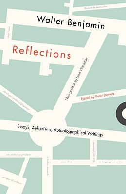 Image for Reflections Essays Aphorisms Autobiographical Writings