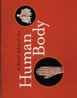 Image for A Brief Atlas of the Human Body