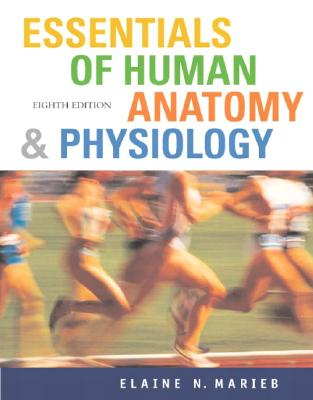 Image for Essentials of Human Anatomy and Physiology