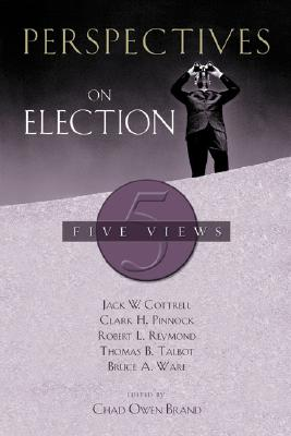 Image for Perspectives on Election