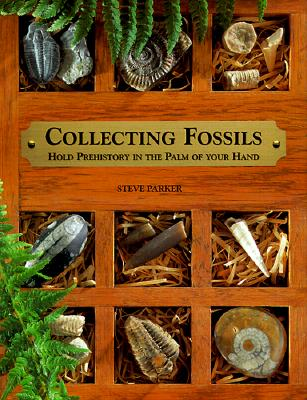 Image for Collecting Fossils: Hold Prehistory in the Palm of Your Hand