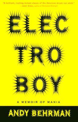 Image for Electroboy : A Memoir of Mania