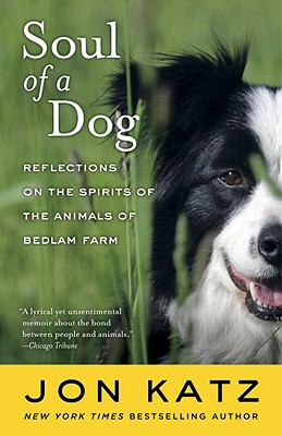 Image for SOUL OF A DOG : REFLECTIONS ON THE SPIRI