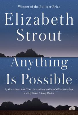 Image for Anything Is Possible: A Novel