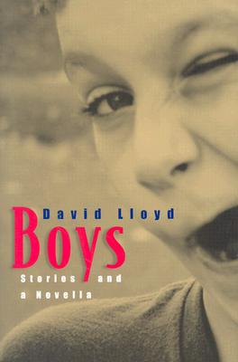 Image for BOYS : STORIES AND A NOVELLA