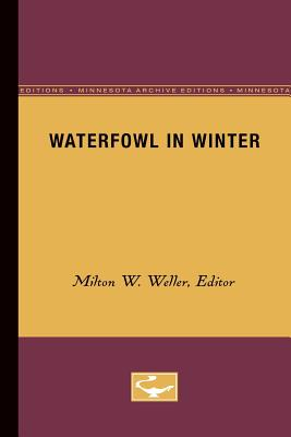 Image for Waterfowl in Winter