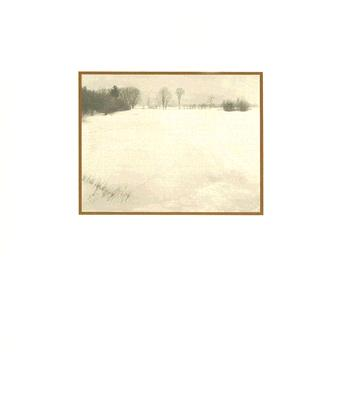 Image for Quiet Landscapes of William B. Post, The
