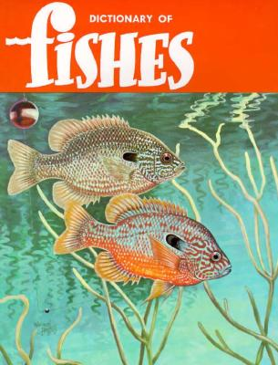 Image for A Dictionary of Fishes