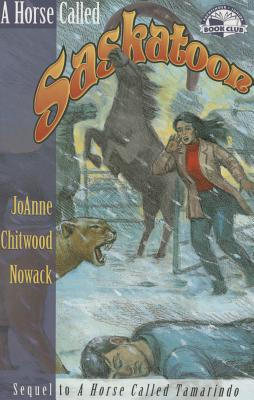 Image for A Horse Called Saskatoon (Pathfinder Junior Book Club)