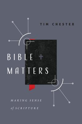 Image for Bible Matters: Making Sense of Scripture