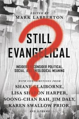 Image for Still Evangelical?: Ten Insiders Reconsider Political, Social, and Theological Meaning