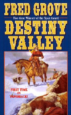 Image for DESTINY VALLEY