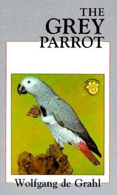 Image for Grey Parrot