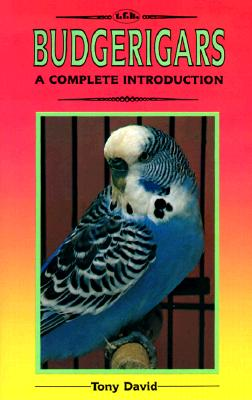 Image for Complete Introduction to Budgerigars