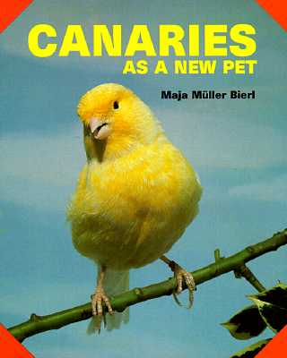 Image for Canaries As a New Pet