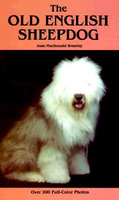 Image for Old English Sheepdog
