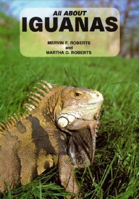 Image for All About Iguanas