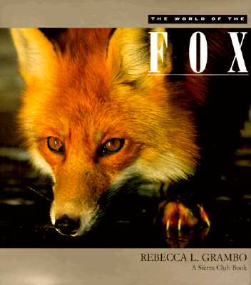 Image for The World of the Fox