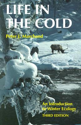 Image for Life in the Cold: An Introduction to Winter Ecology