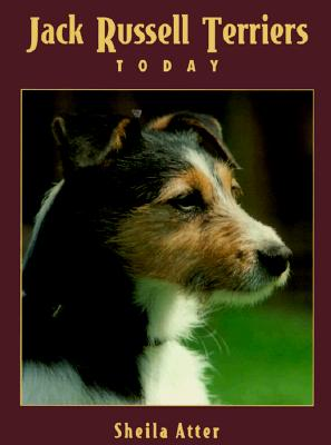 Image for JACK RUSSELL TERRIERS TODAY