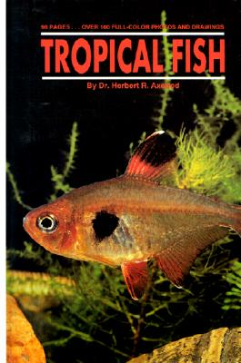 Image for Tropical Fish