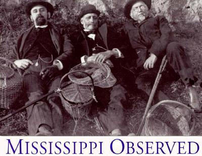 Image for Mississippi Observed