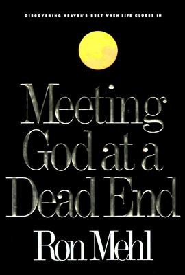 Image for Meeting God At A Dead End