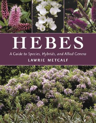 Image for Hebes: A Guide to Species, Hybrids and Allied Genera
