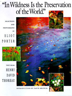 Image for IN WILDERNESS IS THE PRESERVATION OF THE WORLD TEXT FROM HENRY DAVID THOREAU