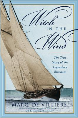 Image for Witch In The Wind