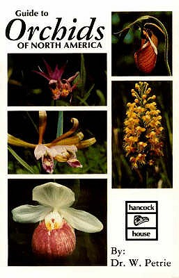 Image for Guide To Orchids Of North America