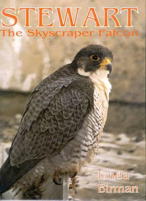 Image for Stewart the Skyscraper Falcon