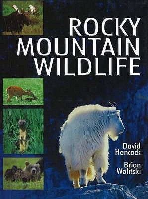 Image for Rocky Mountain Wildlife