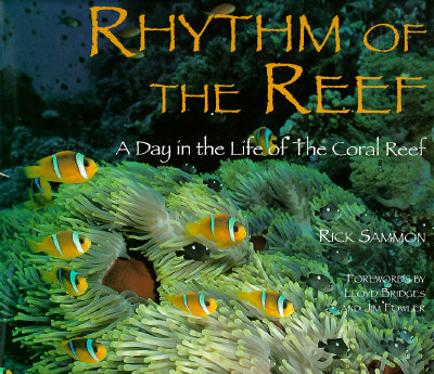 Image for Rhythm of the Reef: A Day in the Life of the Coral Reef