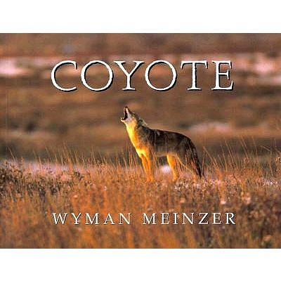 Image for Coyote (Southeast Asia Series; 95)