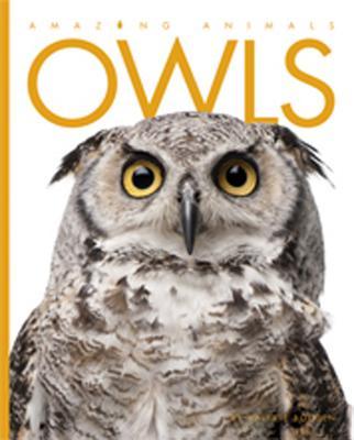 Amazing Animals: Owls, Bodden, Valerie