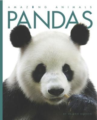 Amazing Animals: Pandas, Bodden, Valerie