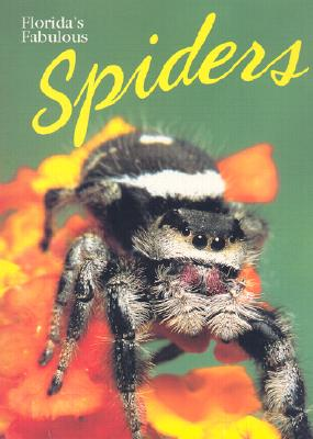 Florida's Fabulous Spiders